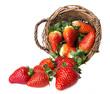 fresh strawberries in a basket - white background