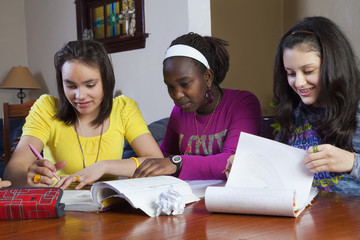 Teenage girls doing homework