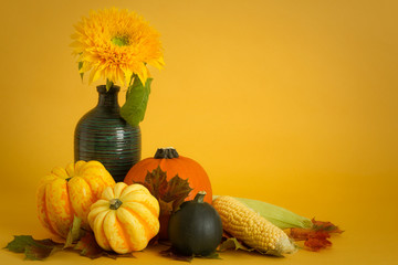 Squashes and sunflower