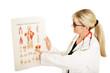 Ärztin mit Muskelaufbautafel