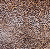 Brown fur background macro