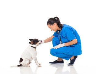 veterinarian doctor playing with pet dog