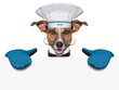 dog cook chef banner