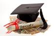 Doktorhut und Yen. Bildungskosten in Japan.