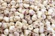 Italian Garlic Bulbs