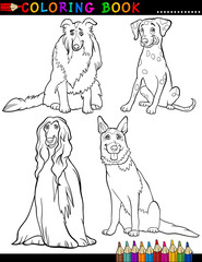 Cartoon purebred Dogs Coloring Page