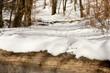 Foot trace on fallen trunk in snowy winter forest.
