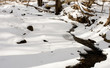 Stream covered with ice in snowy winter forest.
