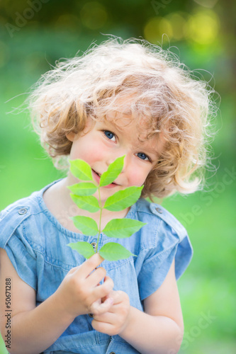 Young plant against green background