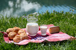 Milk, cheese and bread served at a picnic in an Alpine meadow, S