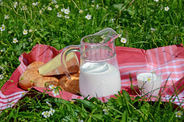 Milk cheese and bread