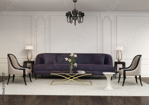 Contemporary elegant contemporary living room, velvet sofa