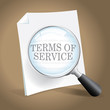 Reviewing Terms of Service