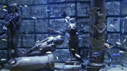 Egyptian Statues under the sea