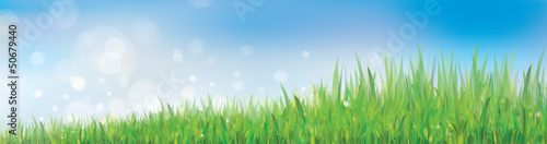 Vector of blue sky background with grass.