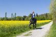 auf dem Pferd die Natur genießen