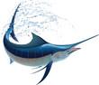 Blue Marlin - 50682237