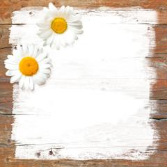 Zwei Margeriten auf Holz, zwei Blüten, Grußkarte