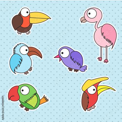 bird kid