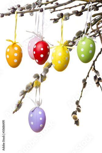 easter eggs on a spring branch isolated