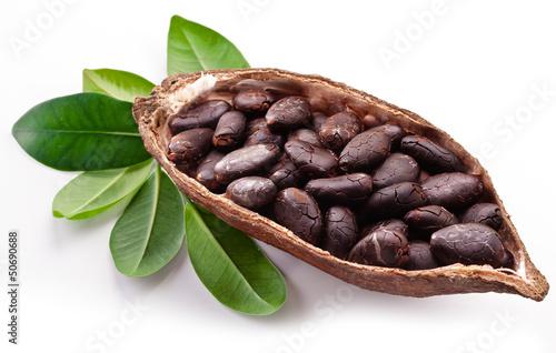 Cocoa pod - 50690688