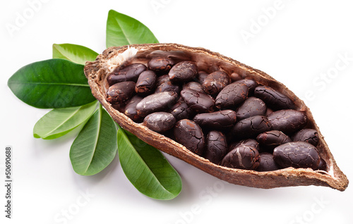 Leinwandbild Motiv Cocoa pod