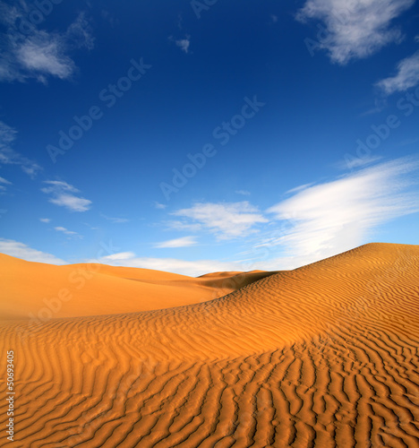 Staande foto India evening desert landscape