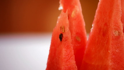 Fresh sliced watermelon gyrating in loop. Close up.