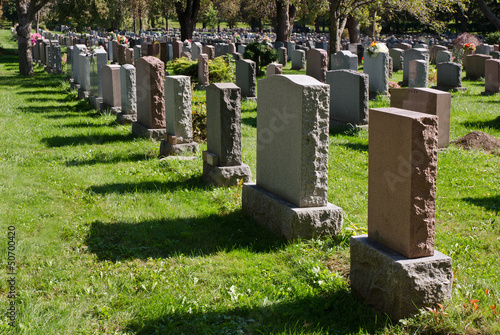 Gravestones in an american Cemetery - 50700420