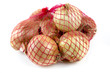 Bag of onions isolated