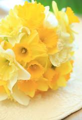 スイセンの花束