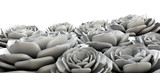 Rock Rose Succulents Grey