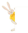 Vector of cute rabbit hiding by blank.