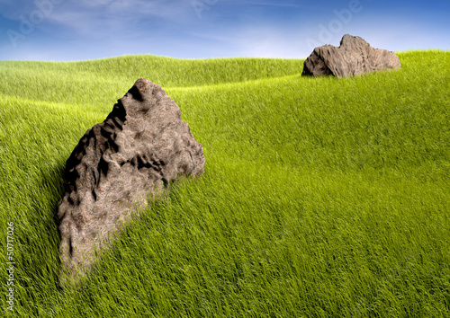 Felsen auf Wiese