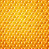 Vector Background with Honeycombs