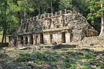 Ancient Mayan stone ruins at Yaxchilan, Chiapas, Mexico