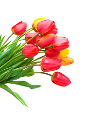 bouquet of tulips isolated on white background. vertical photo.