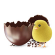 Broken Chocolate Easter Egg with Little Chicken