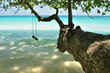 A swing on the beach at Similan island, Thailand.