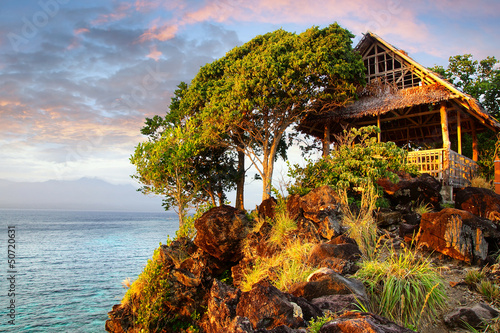 Picturesque landscape with hut.