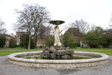 Fountain in Iveagh Gardens, Dublin