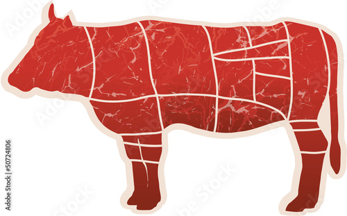 American Steak Cuts - vector