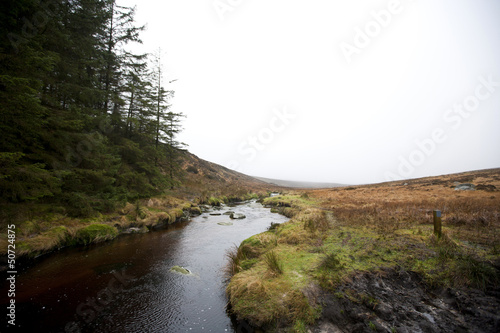 Stream running through Wicklow National Park