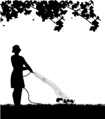 Woman gardener watering flowers, roses with hose silhouette