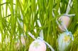 Ostereier im Gras vesteckt