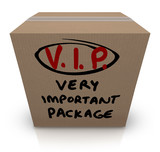 VIP Very Important Package Cardboard Box Shipment