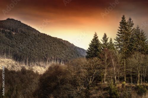 Mountain landscape Afan park