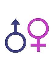 Cinsiyet İşaretleri