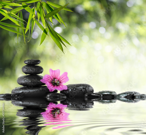 black stone and hibiscus with bamboo on the water