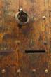 Old Door. Detail